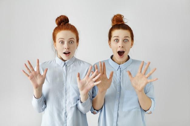 同様の服を着た髪のパンを持つ2つのびっくりした赤毛の女の子の肖像画 無料写真