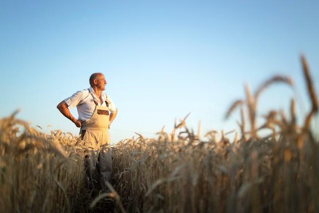 Ritratto di senior agricoltore agronomo nel campo di grano guardando in lontananza Foto Gratuite