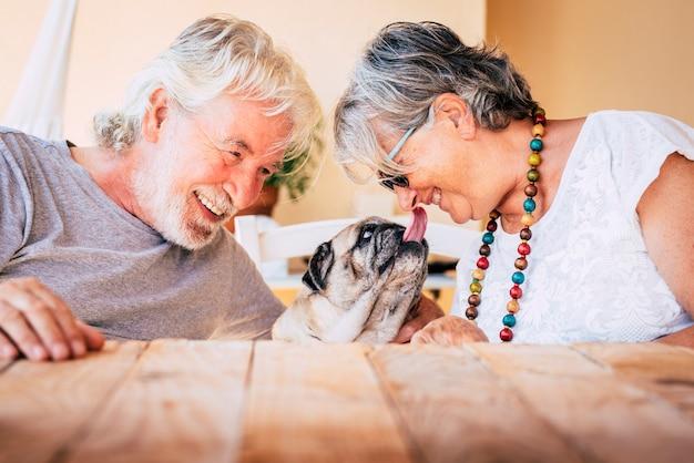 Portrait of senior mature caucasian people couple with funny pet pug dog kissing and having Premium Photo