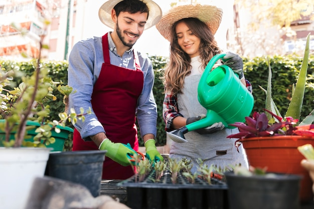 Portrait of smiling young female and male gardener taking care of seedlings in crate Free Photo