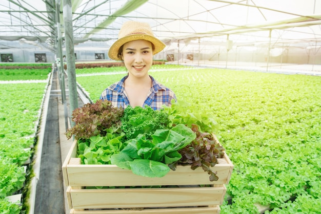 Portrait of young attractive beautiful asian woman harvesting fresh vegetable salad from her hydroponics farm in greenhouse hand hold wooden basket and smile, small business entrepreneur concept Premium Photo
