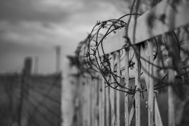 有刺鉄線のフェンス、戦争、postapocalypse Premium写真