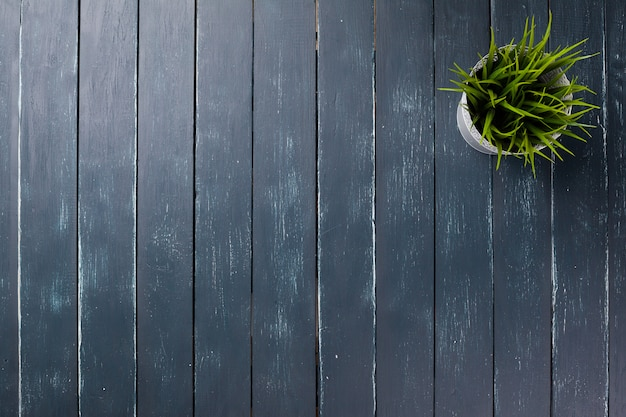 Potted grass flower over wooden table background with copy space Premium Photo