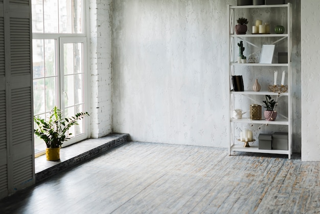 Potted plant near the window and shelf in the room Free Photo