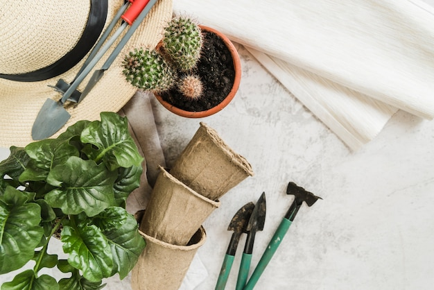 Potted plants; peat pots; gardening tools; straw hat and napkin on concrete backdrop Free Photo