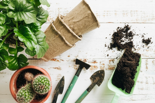 Potted plants; peat pots; soil and gardening tools on wooden table Free Photo