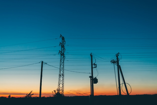 Power lines in field in sunrise Premium Photo