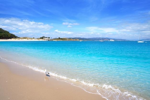 Praia de rodas beach in islas cies island vigo spain Premium Photo