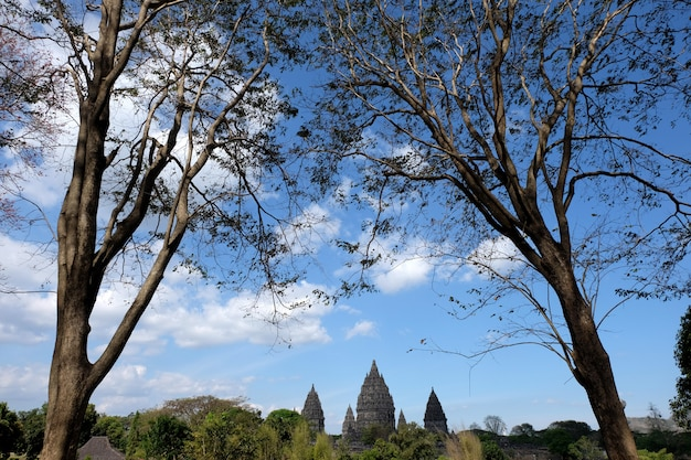 Prambanan temple with blue sky background and trees as foreground, a hindhu temple at yogyakarta, indonesia. Premium Photo