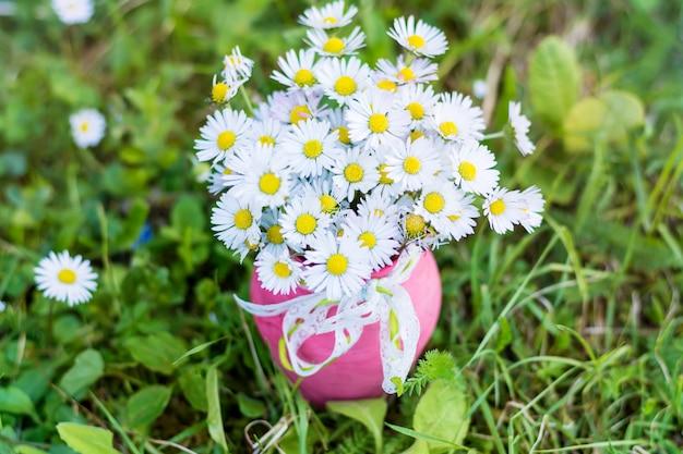 Margherite piuttosto in un vaso di colore rosa Foto Gratuite