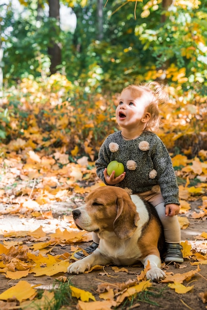 Pretty girl holding ball sitting on her pet beagle dog in forest Free Photo