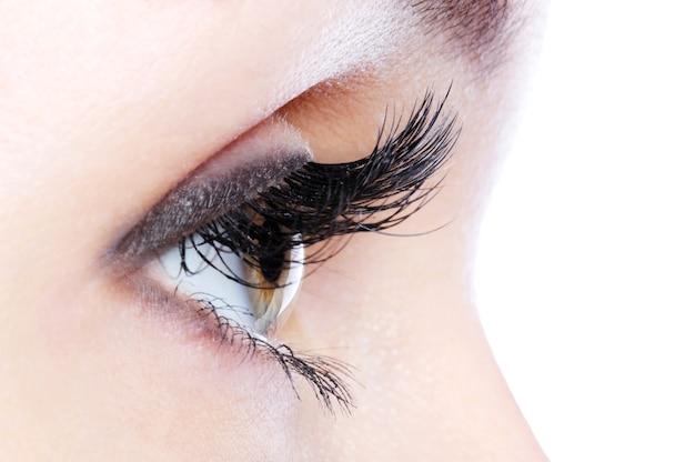 Vista di profilo di un occhio umano con ciglia finte ricciolo lungo Foto Gratuite