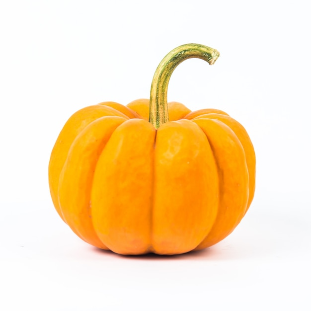 Pumpkin on white background Premium Photo