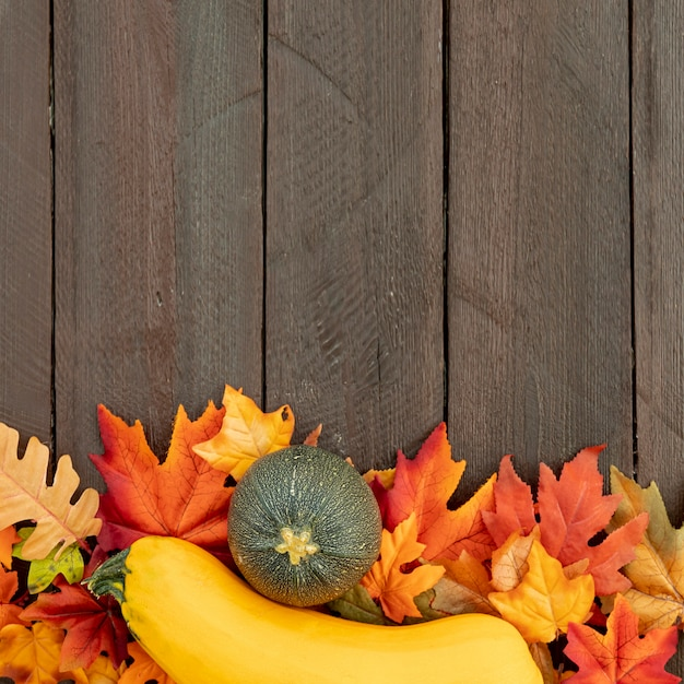 Pumpkins on colourful leaves with copy space Free Photo