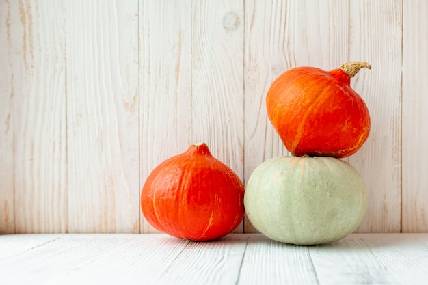 Pumpkins in front of white wooden wall Premium Photo