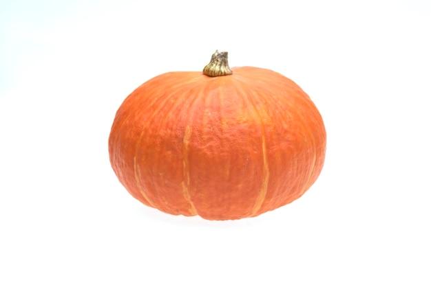 Pumpkins isolated on white background Premium Photo