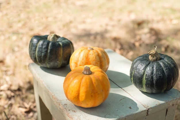 Pumpkins on wooden table outdoors Free Photo