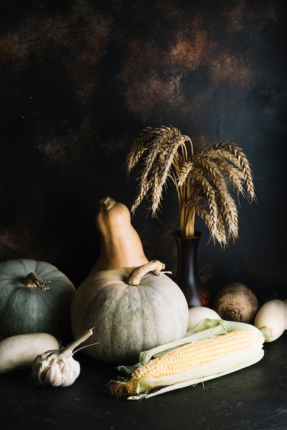 Pumpkins and squashes with copy space Free Photo