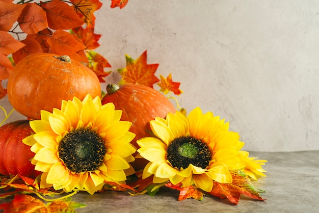Pumpkins and sunflowers near autumn leaves Free Photo