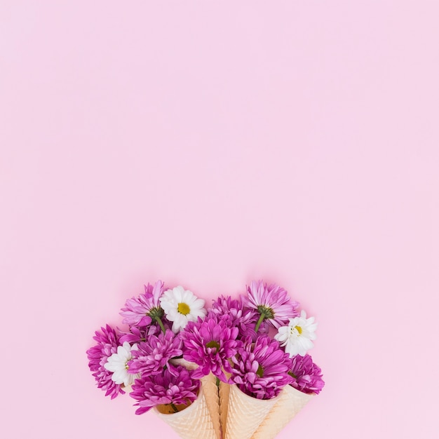 Purple and white flowers in waffle cones Free Photo