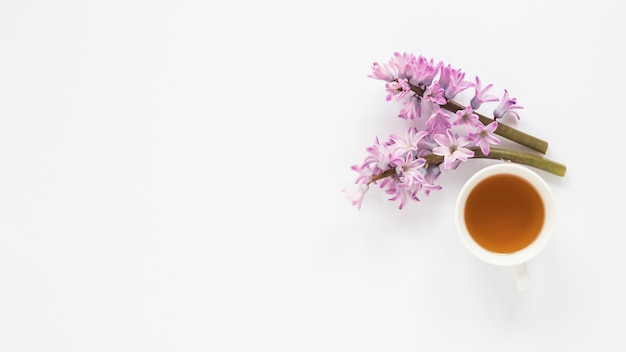 Purple flower branches with tea cup Free Photo