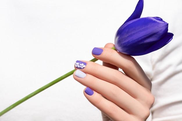 Фиолетовый дизайн ногтей. женская рука с фиолетовым маникюром держит цветок тюльпана Бесплатные Фотографии