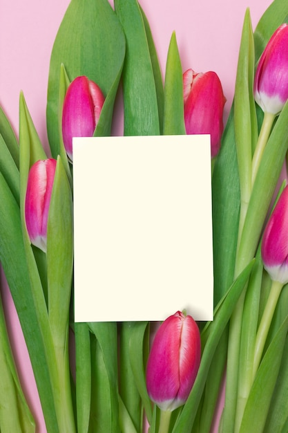 15d7735a1c294 Purple tulip bouquet and blank greeting card on pink background for  mother's day Premium Photo