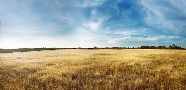 Puru kambera landscape Premium Photo