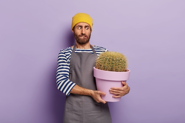Puzzled man holds pot of big cactus with sharp thorns, wears hat and apron, being plant lover Free Photo