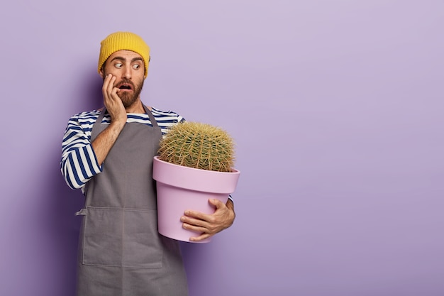 Puzzled stupefied male florist holds big pot of decorative spiny green cactus Free Photo