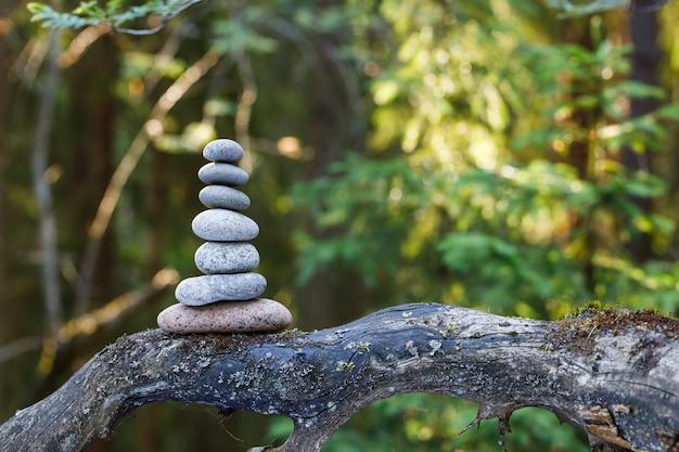 Камни пирамиды балансируют на стволе дерева в лесу. пирамида в фокусе, лесной фон размыт. Premium Фотографии