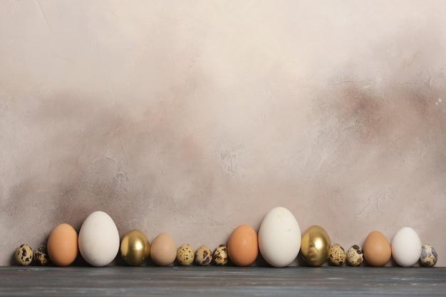さまざまなサイズと色のウズラ、鶏、ガチョウ、ホロホロ鳥の卵が灰色の古い壁を背景に並んでいます。 Premium写真