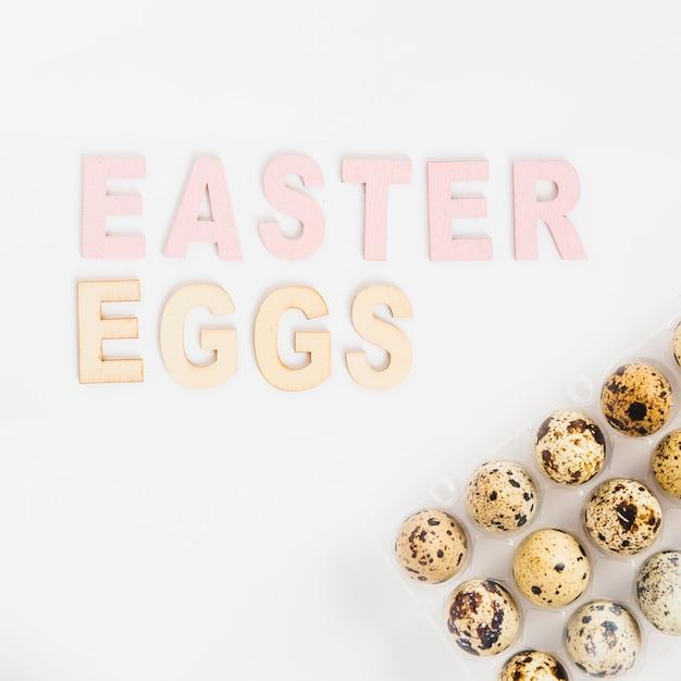 Quail easter eggs in rack Free Photo