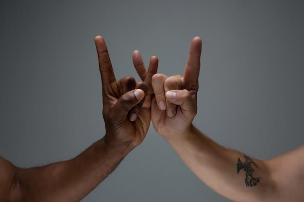 Tolleranza razziale. rispetta l'unità sociale. gesturing africano e caucasico delle mani isolato su gray Foto Gratuite