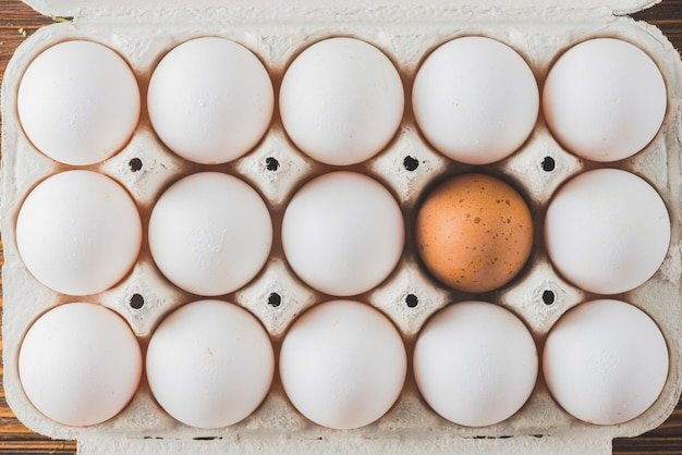 Rack with white and brown eggs Free Photo