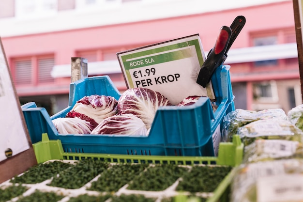 Radicchio in blue crate with price label Free Photo