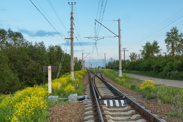 Railroad tracks by the countryside in the evening Premium Photo