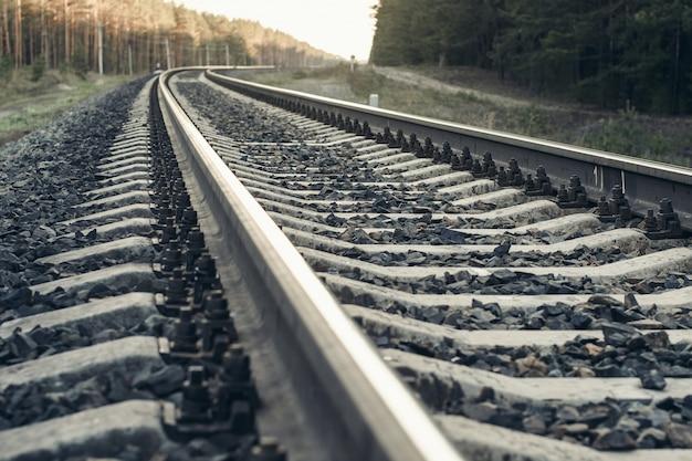 Railway in forest. Premium Photo
