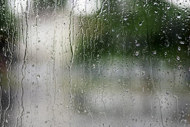 Капли дождя на окне с зеленым Premium Фотографии