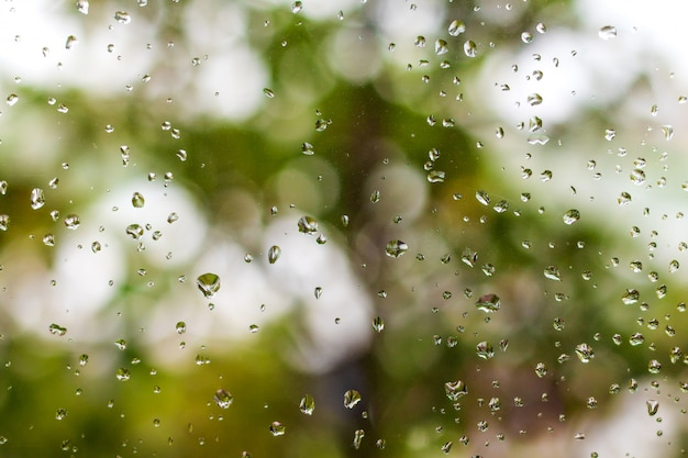 Rain drops on window and green nature background. Premium Photo