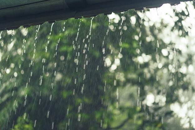 ヴィラの窓の外の雨。 無料写真