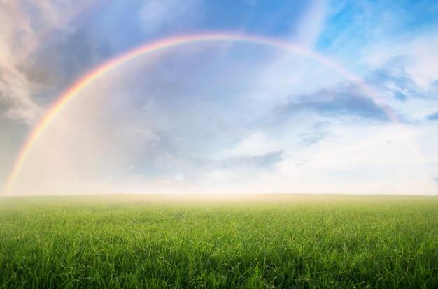 Rainbow with meadow. Premium Photo