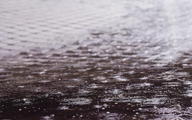 Raindrops in a puddle Premium Photo