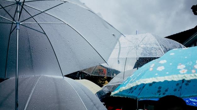 Rainy day and umbrella Free Photo