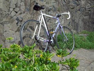 Raleigh lightweight trilite, bike Free Photo