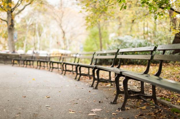 Gamma di panche di legno nel parco con molte foglie di autunno cadute con uno sfocato Foto Gratuite