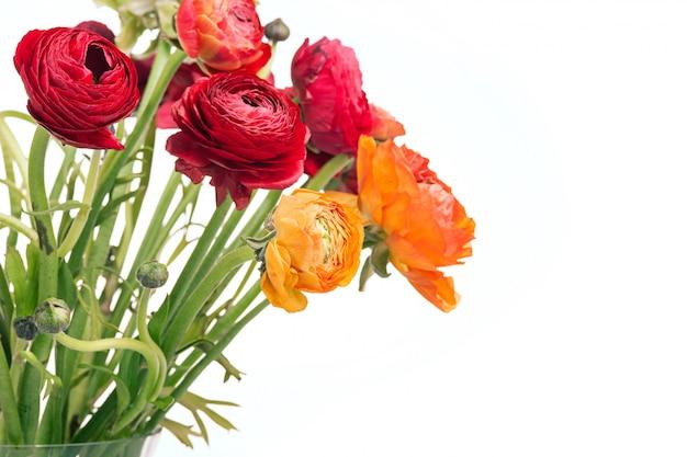 白地に赤い花のranunkulyusブーケ 無料写真