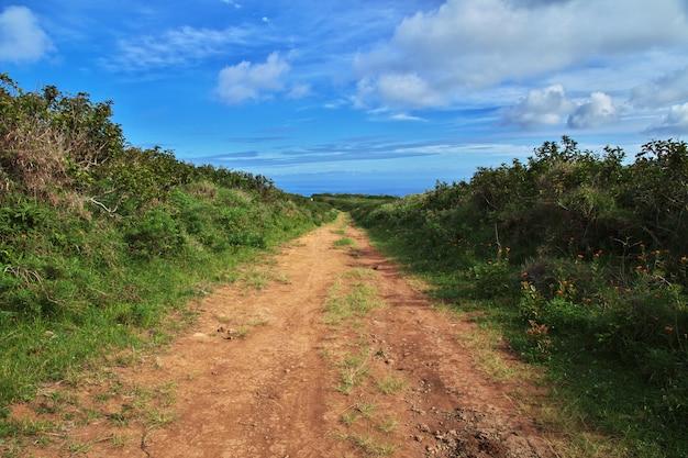 Rapa nui. дорога на острове пасхи, чили Premium Фотографии