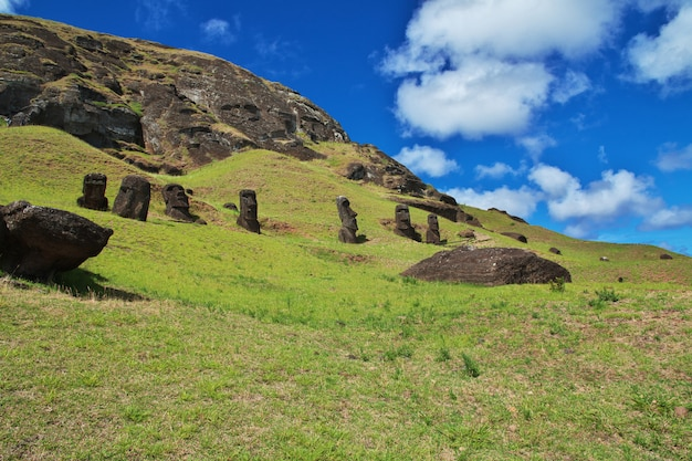 Rapa nui. статуя моаи в рано рараку на острове пасхи, чили Premium Фотографии
