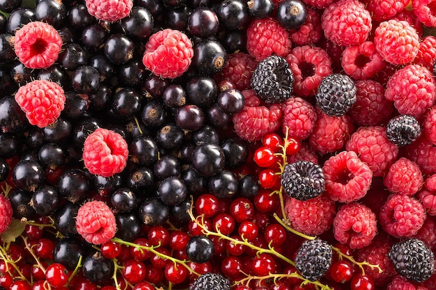 Raspberry, blackberry and currant background. fruit background. Premium Photo